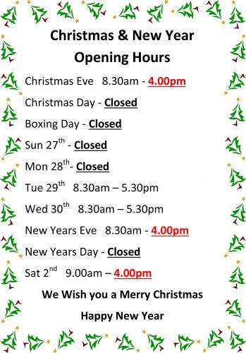 Settle DIY Christmas opening hours-1
